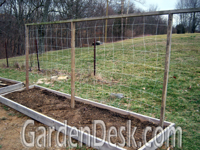 GardenDesk Time for Peas