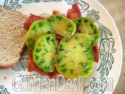 varieties of tomatoes. tasting tomato varieties,