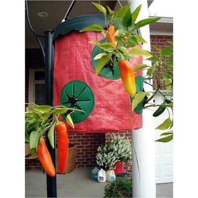 GardenDesk Do Upside Down Tomato Planters Work