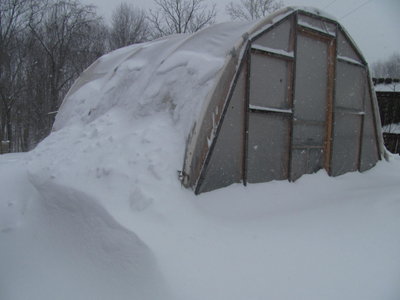 Greenhouse in snow 1