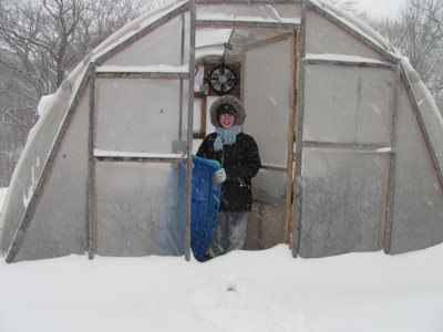 Greenhouse in snow 2