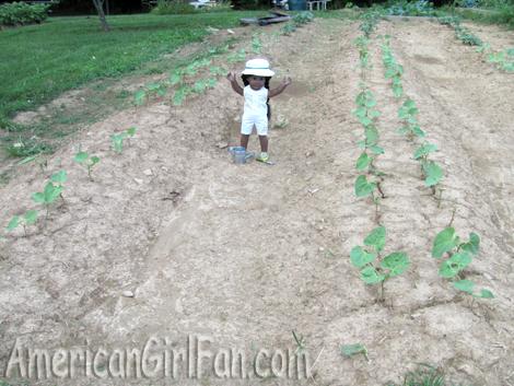 In potatoe patch