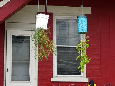 Hanging_Garden3