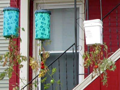 Hanging_Garden2