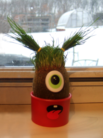 Eye_Grow_C