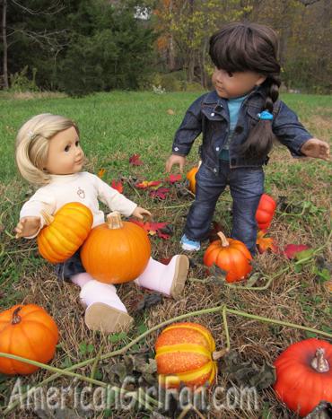 Lots of pumpkins1