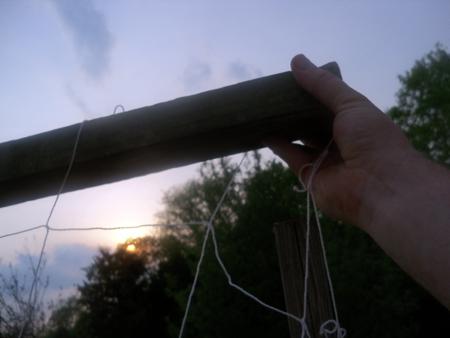 Trellis net weave2