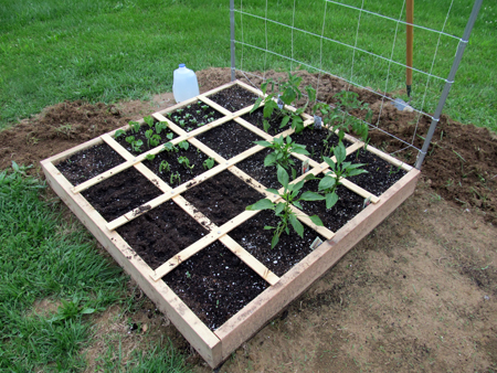 Square_Foot_Garden_Bed