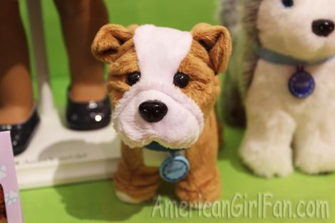 Meatloaf dog
