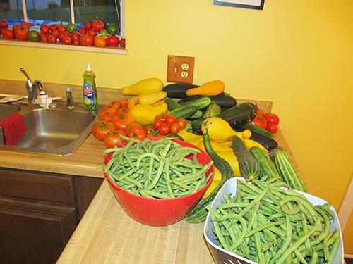 July_Harvest
