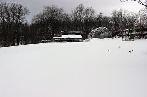 Snow_Coop_1