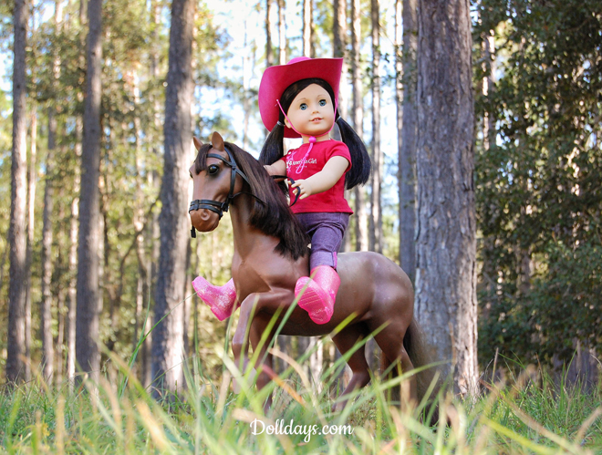 49 American Girl Doll Crafter